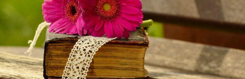 Wer war Lena in der Bibel?