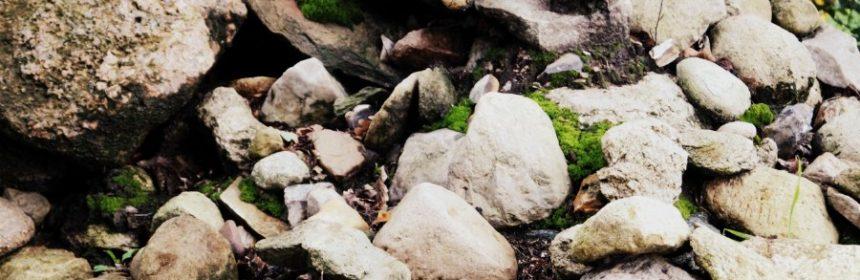 Was bedeutet Stein des Anstoßes?