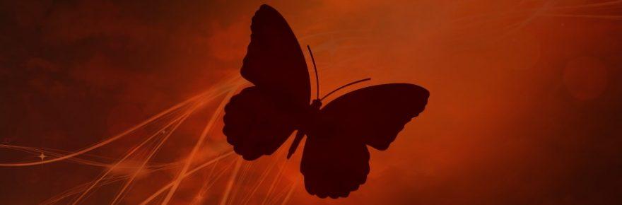 Was bedeutet Wer Schmetterlinge lachen hört?
