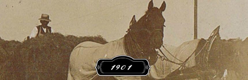Was geschah im Jahr 1901?